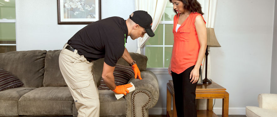 Coquitlam, BC carpet upholstery cleaning